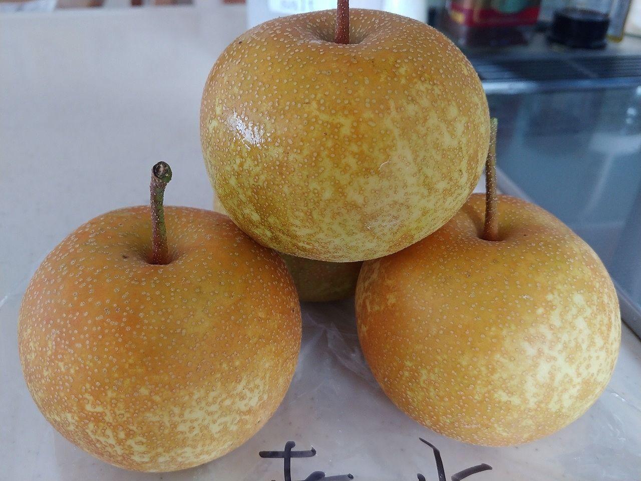 子どもたちが大好きな梨が出始めました