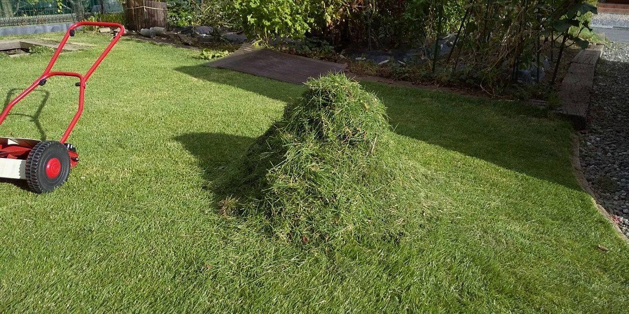 服につくと厄介な刈った芝