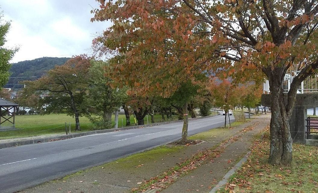紅葉が進んでいる諏訪湖畔
