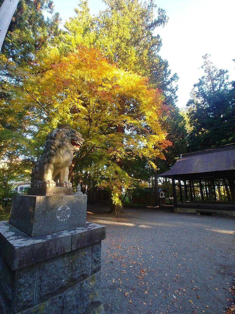 拝殿を背に 出早雄小萩神社の紅葉