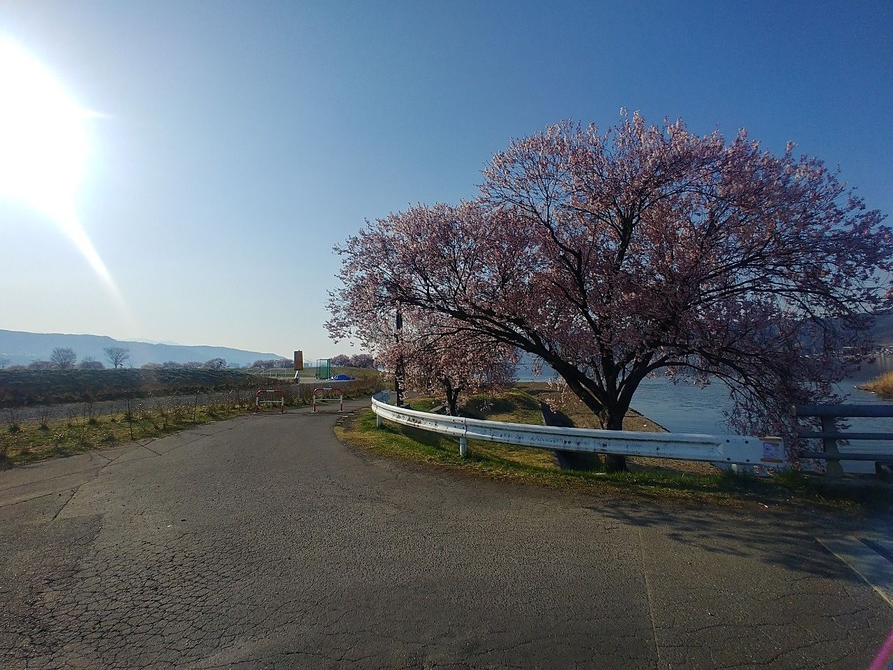 季節を感じる街道~下諏訪町赤砂崎~