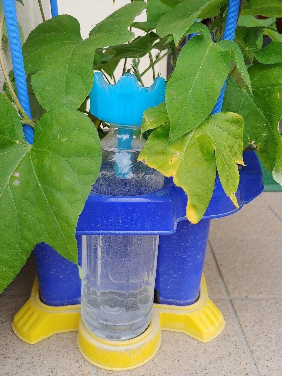 給水補助用のペットボトルです